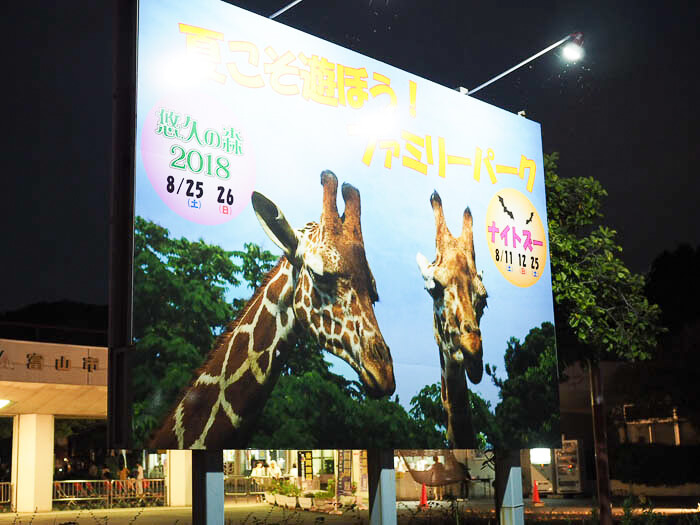 【富山市ファミリーパーク】夏限定のナイトズーへ行こう!自由研究にもピッタリ