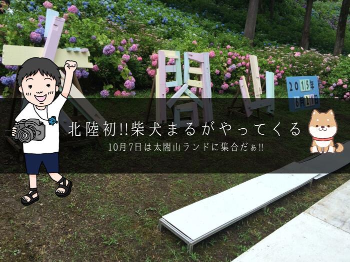 【太閤山 元気秋フェスタ2018】柴犬まるがやってくる、はなかっぱのショーもあるよ!!