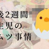 新生児のオムツがぶかぶかで困っている方必見「3,000g以下用の3Sがおすすめ」